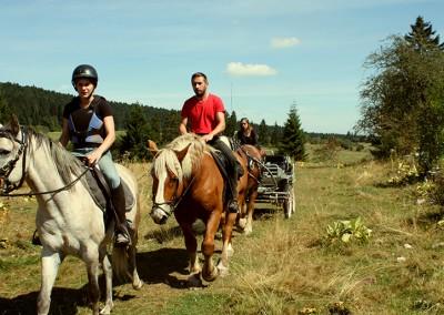 cheval-haut-doubs-randonnee-3