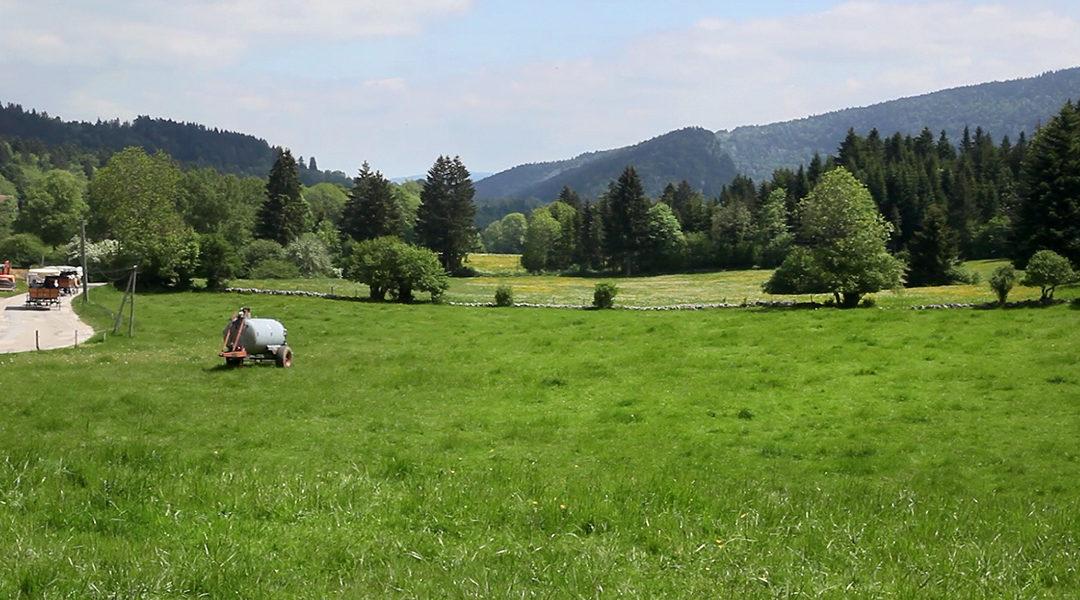 Saut du Doubs – 50 Nuances de vert