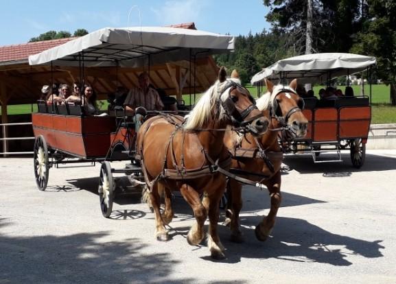 Comme à Collioure ou Ouarzazate, c'est toujours les vacances aux calèches du Saut du Doubs
